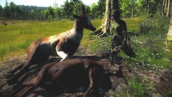 Bollo11 piebald elk non-typical blacktail