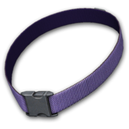 Dog collar purple