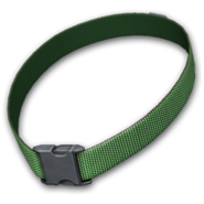 Dog collar green