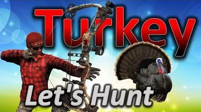 TheHunter Let's Hunt TURKEY (big turkey 67