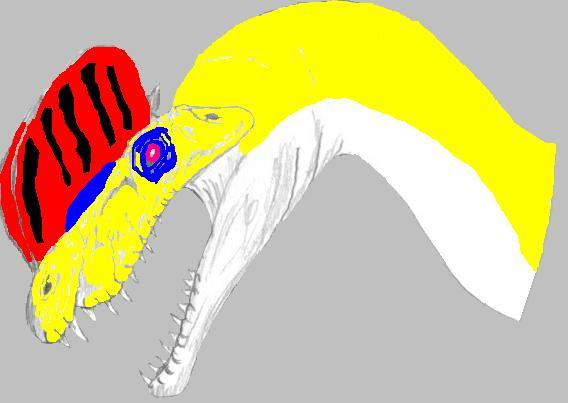File:Dila (colored).jpg