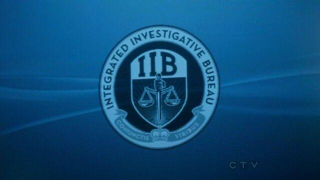 File:IIB logo.jpg