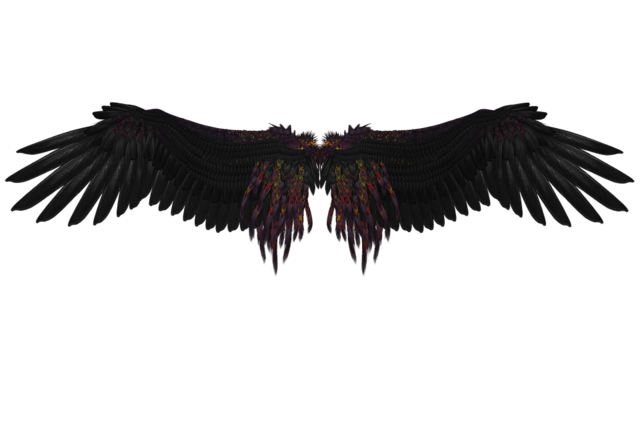 File:Black-Engel-Black-Wing-Mystical-Feather-Fly-Angel-1657364.png