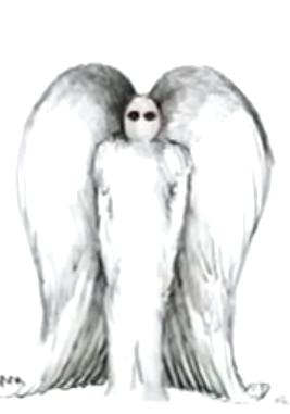 File:Moth71.PNG