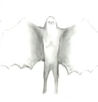 Moth72