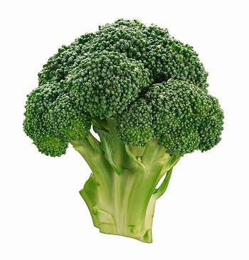 File:Broccoli (1).jpg