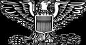 200px-US-O6 insignia svg