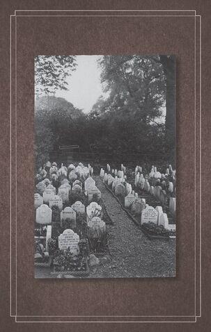 File:Peculiar graveyard.jpeg
