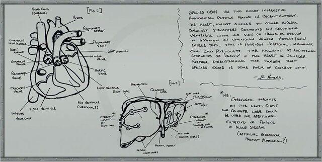 File:C2a4x labboard9.jpg