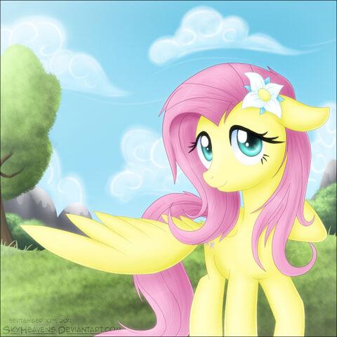 File:Pony Morning , Fluttershy.jpg