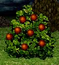 File:Power Berries.png