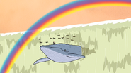 S5E29.119 A Blue Whale and a Rainbow Appears