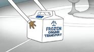 S6E27.086 Frozen Organ Transport Box