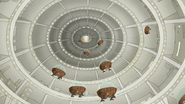 S8E15.162 The Domes Flying Out the Hanger 01
