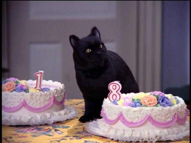 File:Salem Eats Cake.png