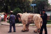 Sandlot giant the beast puppet in street