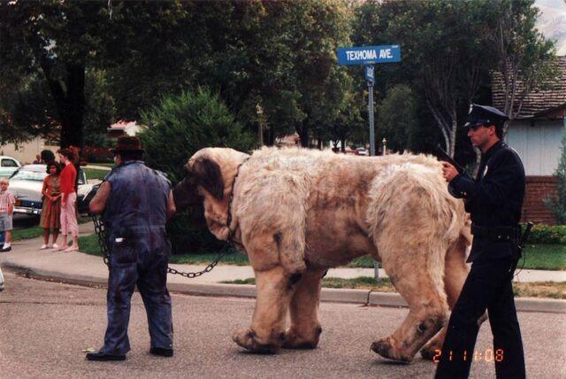 File:Sandlot giant the beast puppet in street.jpg