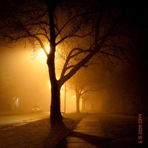 File:Slender Man Sighting 045.jpg