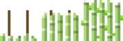 Reed Growth Stages