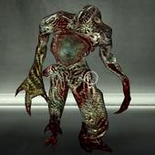 Walker 5 - Profile