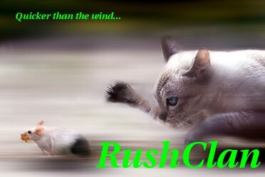 RushClan