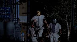 BaseballFuries