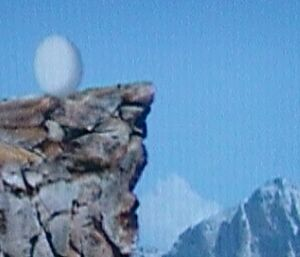 Eggfall