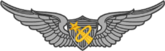Army Astronaut Device and Badge