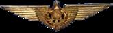 Aviation Badge (Brazil)