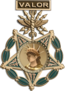 Medal of Honor, Air Force (medal only)