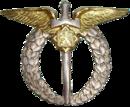 Aviation Badge (Czechoslovakia)