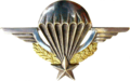 Parachutist Badge (France)
