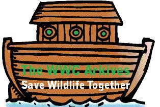 File:WWC Arkives.jpg