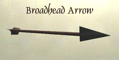 File:BroadheadArrow.JPG