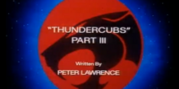 ThunderCubs - Part III