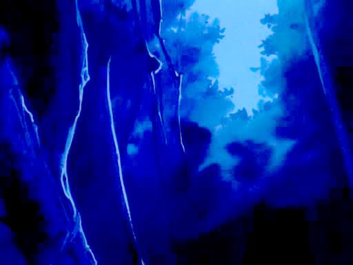 File:Midnight Woods.jpg