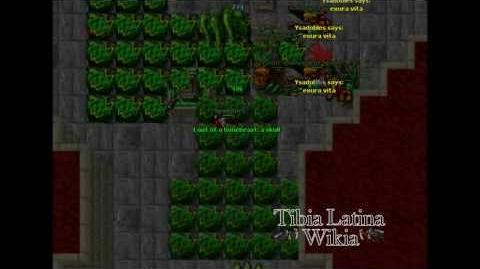 Serpent Spawns Task