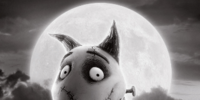 Frankenweenie (feature)