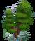 Debris-forkedtree