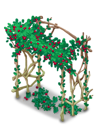 Decoration 2x1 cranberryarbor@2x