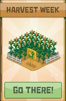 Featured harvestWeek@2x