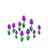 Decoration springtulips purple thumbnail@2x