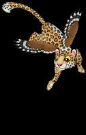 Leopard eagle an