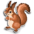 Goal german red squirrel icon