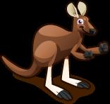 Kangaroo single