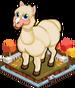 Autumn alpaca single