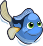 Pacific Regal Blue Tang single