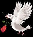 Wedding dove an