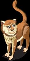 Patas Monkey single