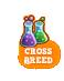 Cross-breed